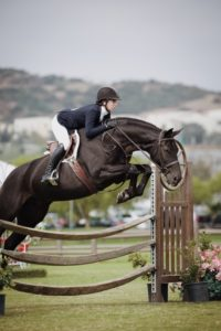 Types of English Horseback Riding | Equine Helper