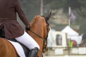 Pants types for horseback riding