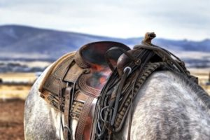 Western Saddle Gear