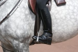 Horseback Riding Gear | Equine Helper