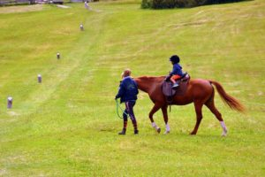 Beginner Horseback Rider Tips | Equine Helper