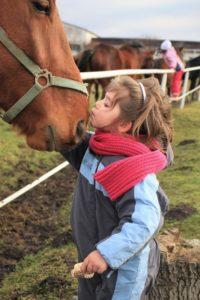Children Safety Around Horses