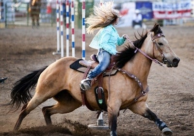 Types of Western Horseback Riding