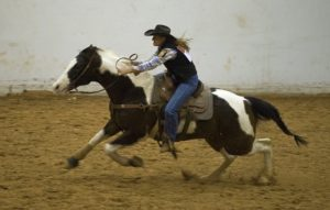 Western Horseback Riding Competitions