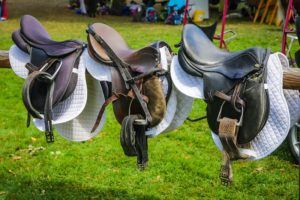 Beginner Horse Gear Saddle Pad