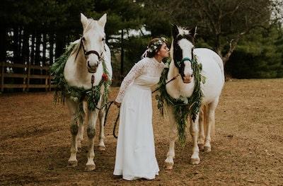Horse Wedding Ideas