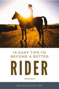 Tips To Become A Better Horseback Rider