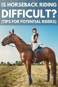 Is Horseback Riding Difficult?