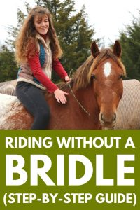 Horseback Riding Without A Bridle