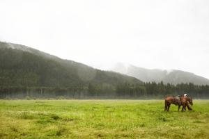 Horseback Riding in the Rain