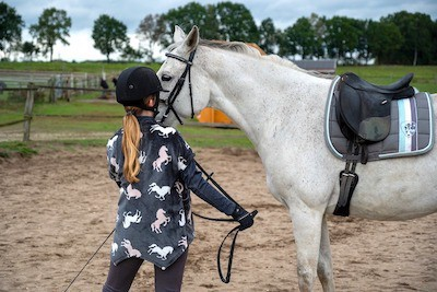 Can a horse remember its owner?