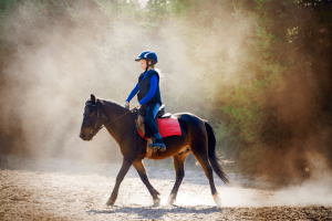 what to wear or horseback riding lessons
