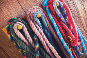 Horse training lead ropes