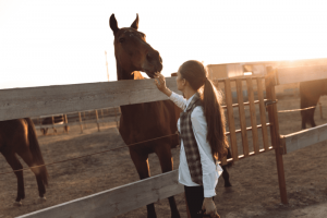 How to be more confident horseback riding