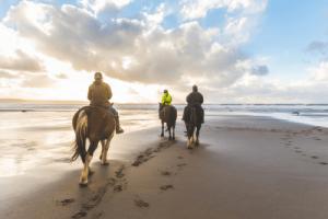 assertive horseback rider