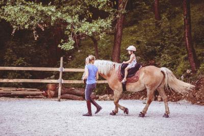 horse therapy FAQ